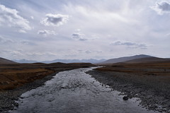MAQ_0401 (MolviDSLR) Tags: deosair national park skardu gilgit baltistan northern areas pakistan brown bear wild life scenery landscape