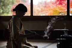 The Way of Tea  (Patrick Vierthaler) Tags: japan kyoto sado way tea japanese teezeremonie japanische maccha autumn fall momiji herbst 2016 uji         shoden sanso shouden sansou
