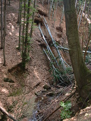 Ilona-patak vlgye (ossian71) Tags: magyarorszg hungary mtra termszet nature erd forest tjkp landscape