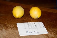 IMG_6129 (armadil) Tags: freecycle lemon lemons