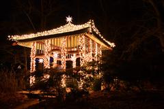 Stars Pavillon @ Christmas Garden Berlin (MR-Fotografie) Tags: berlin garden christmas light licht stars sterne stern star pavillon nikon d7100 tokina weitwinkel mrfotografie night nacht dark dunkel outdoor