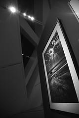 Double Rays (peterkelly) Tags: light bw toronto ontario canada wall digital ray photographer framed exhibition beam photograph frame northamerica rays genesis rom beams royalontariomuseum michaelleechincrystal