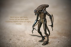 they mostly come at night... (Paul J's) Tags: toy model alien aliens warrior xenomorph nostromo lv426 130719
