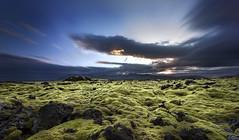 IMG_43541 (thorsteinns) Tags: nature landscape lava iceland moss snfellsnes