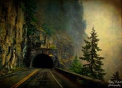 Mt. Rainier national park (Pattys-photos) Tags: washington mtrainiernationalpark