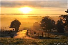 Early morning at Ashton Court Estate (original version) (zolaczakl) Tags: road trees mist sunrise fence bristol golden earlymorning lane fields 2012 ashtoncourt longashton lunaphoto ashtoncourtestate