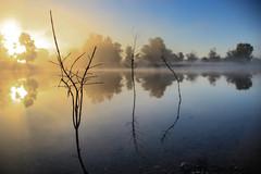 (flickaway1) Tags: park blue sky water yellow fog sunrise canon sticks still michigan foggy calm lamar rays wyoming t3i lightroom5