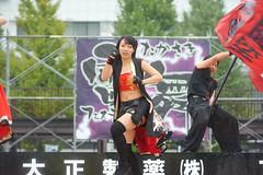 KBS_2013-10-20_2_022 (kv492) Tags: japan yosakoi gunma takasaki kobushi よさこい 虎舞士 雷舞 takasakilive たかさき雷舞