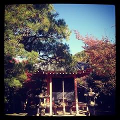 #kiyomizudera #japan #kyoto