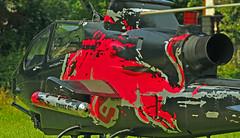 Red Bull Air Challenge 2013 Wolfgangsee 1 (Johann Landlinger) Tags: red st air bull flugzeug johann redbull challenge obersterreich wolfgang stunt wolfgangsee salzkammergut 2013 scalaria landlinger flugakrobat
