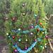 Trees_of_Loop_360_2013_006