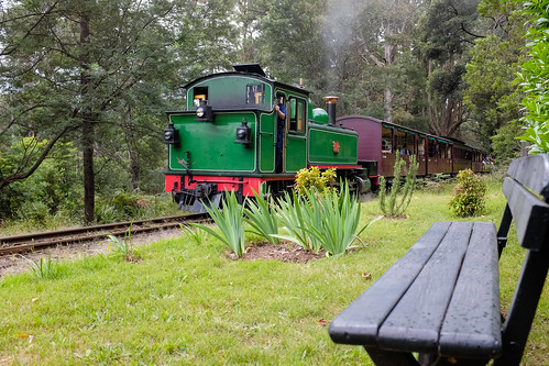 20131208-Nobelius Station Puffing Billy by r reeve, on Flickr
