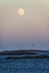 hasla (Birgit F) Tags: sunset moon seagulls lighthouse norway december skagerrak skerries grimstad fyrtårn torungen austagder fevik hasseltangen