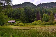 Little House in the Highlands (Remi (Photo Hiker)) Tags: trees house tree scotland pond scottishhighlands