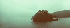 Doubtful Sound, NZ (Amanda Tomlin) Tags: newzealand film widelux adoxcolorimplosion
