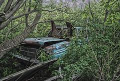 DSC_0064 (CrazyCarClub) Tags: urban cars abandoned forgotten trucks junkyard exploration ue urbex rurex crazycarclub