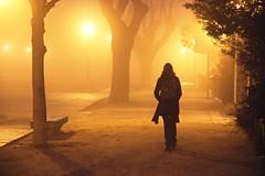 Foggy day (jcmejia_acera) Tags: park parque winter espaa woman yellow lights luces mujer spain walk young paseo amarillo lampost rbol invierno farolas niebla joven foog sanlorenzodeelescorial