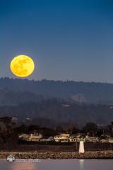 harbor-moon-rising (xbirdo) Tags: santacruz lighthouse harbor fullmoon moonrise