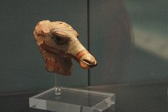 Coy Camel (JRH70) Tags: london sony camel britishmuseum mesopotamia nex ancientcivilisations sonynex5