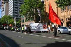 9th Annual Ashura Procession  - Australia 53
