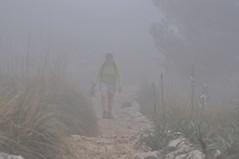 Exposicin (bocatacalamares) Tags: del nikon camino paseo montaa mallorca niebla caminando d90 archiduque