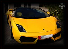 Abu Dhabi, United Arab Emirates (Wioletta Ciolkiewicz) Tags: auto city car yellow capital ciudad voiture arabic abudhabi lamborghini emirate unitedarabemirates citt zea miasto samochd stolica emiratiarabiuniti  emiratosrabesunidos aventador