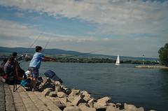 Fischpeitsche (Simon Neutert) Tags: street fish water fishing pentax ufer rhine rhein 21mm ingelheim focuspocus colorlovor