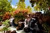 Idyllic (jcc55883) Tags: hawaii waterfall nikon waikiki oahu waikikibeach yabbadabbadoo d40 kalakauaavenue kuhiobeachpark nikond40