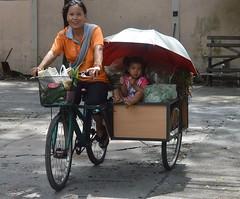 returning from the market (the foreign photographer - ) Tags: sep182016nikon mother daughter returning market bicycle cart umbrella bangkhen bangkok thailand nikon d3200