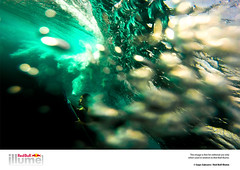 Red Bull Illume Image Quest - The Finalists (Red Bull Illume) Tags: adventure adventurephotographer adventurer advernturephotography alohaboardsports aquamundo baler beach beuchat billabong billabongph deepapnea expidition explore fins freedive freediver freediving gapssabuero gapssabuerophoto gapssabuerophotography gapsphoto gopro goprophilippines hurleyph jellywig knekt launion natgeoadventure natgeo nationalgeographic nationalgeographicchannel nikon nikonphilippines nikonpro oneill oneillph outdoor outdoorphotographer outdoorphotography outdoors photojournalism photojournalist quiksilver quiksilverph redbull redbullsurfing redbullph roxy roxyph siargao spearfishing speargun sunset surf surfiligan surfphilippines surfphotographer surfphotographerphilippines surfphotography surfer surfing techdiving travel travelasia travelphilippines travelphotographer travelphotography underwater underwaterphotographer volcomph waves