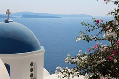 Oia Santorini (Nabila M.) Tags: santorini cyclades greece island sea blue view landscape greek flowers canoneos canon1200d oia church mediterreanean caldera amateurphotographer kyklades