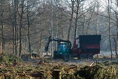 ckuchem-7179 (christine_kuchem) Tags: wald abholzung baum baumstmme bume einschlag fichten holzeinschlag holzwirtschaft waldwirtschaft