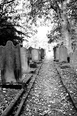 A quiet walk..... (jennymiles3) Tags: elements cemetery black white haworth