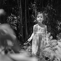 Children of the Corn. If they were Australian. And had iPhones. (Shooting Ben) Tags: film 120 120film blackandwhite mamiya c330 caffenol caffenolc instantcoffee coffee mediumformat child girl toddler dress cute iphone fun