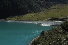lac des Toules (bulbocode909) Tags: valais suisse lacdestoules bourgstbernard vaches nature montagnes lacs vert bleu valdentremont
