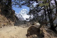 Nochmals einen Blick zurck... (Alfesto) Tags: nepal wanderung trekking himalaya sagarmathanationalpark namche tengboche khumbuarea