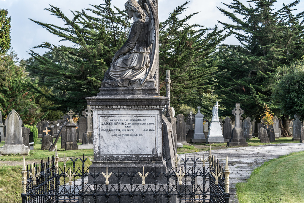 A QUICK VISIT TO GLASNEVIN CEMETERY[SONY F2.8 70-200 GM LENS]-122074