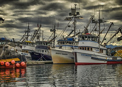 Misty Moon Voyager Art 158 (Gillfoto) Tags: seiner seineboat fishing commercialfishing alaskacommercialfishing alaskacommercialfishingfleeet juneau alaska statterharbor fleet