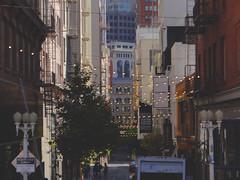 Union Square @ San Francisco, Sep, 2016 (Lucas Vargas) Tags: san francisco sf united states us estados unidos lombard street bay fishermans walf hyde powell union square photgraphy trip vacation 2016 sony hx100v cable car