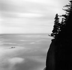 Nothing is forever, not even the ocean (Zeb Andrews) Tags: hasselblad film oregoncoast blackwhite monochrome pacificnorthwest pacificocean square longexposure mediumformat 6x6 hasselblad500c bw kodaktrix oregon landscape seascape ndfilter