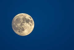 The Moon (JMS2) Tags: moon planet solarsystem round crater sky sony nature bluehour
