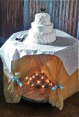 The Cake (Photosintheattic (Devy)) Tags: cake dessert weddingcake flickr food wedding decoration celebration life love family friends photography lights spool