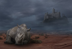 St Michaels Rhino (amy.joseph46) Tags: photoshop cornwall stmichaelsmount rhino zoo dark manipulation photography vacation wacom shadow portrait