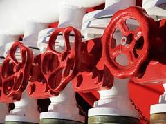 rot und wei: Gerte auf dem Feuerlschschiff (evioletta) Tags: kiel hafen feuerlschschiff rot weis hank you