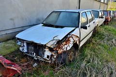 fiat uno SX (riccardo nassisi) Tags: auto abbandonata abandoned rust rusty relitto rottame ruggine ruins rottami scrap scrapyard epave piacenza pc fiat officina decay urbex
