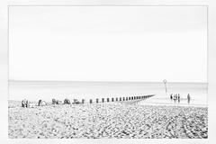 IMG_3750 (Bruno Meyer Photography) Tags: portobello edinburgh scotland visitscotland beach sand swimmers autumn photography blackandwhite blackandwhitephotography sea skyline white raw edit leica leicaimages leicacamera leicam240 leicaworld 35mm summarit roadtrip friends travel travelphotography