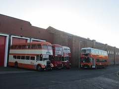 Group Greater Manchester 5871, London Transport RM1414, Stockport 34 & GM Buses 3065 Museum of Transport, Manchester (1280x960) (dearingbuspix) Tags: preserved londontransport fdb334c 34 stockportcorporation stockportcorporationtransport greatermanchestertransport greatermanchester gmbuses manchesterchristmascracker manchesterchristmascracker2016 414clt rm1414 3065 b65pja 5871 kja871f museumoftransportgreatermanchester museumoftransport