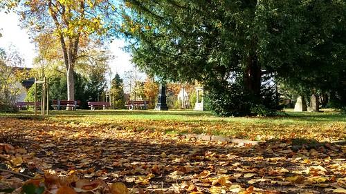 Herbst auf dem alten Friedhof von Selzen