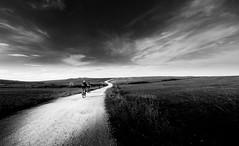 Horizonte (Luis Marina) Tags: bici horizonte bw blancoynegro bn blackwhite landscape sycling fatbike gopro path camino luz iluminacion sendero liencres cantabria colina monte contraste contrast field campo
