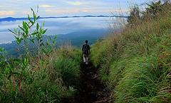 Hike (richardha101) Tags: bali indonesia asia travel wanderlust hike hiking mountain batur outdoor
